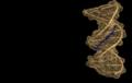 Thumbnail for version as of 14:31, 1 November 2011