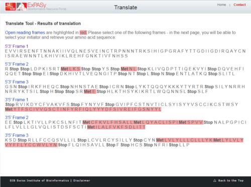 AV-translate-tool.PNG