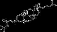 Biomod Aarhus Chem Chol4.png