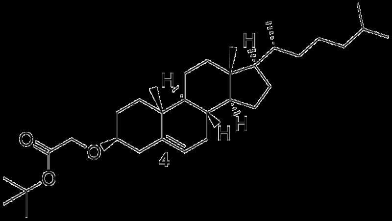 File:Biomod Aarhus Chem Chol4.png