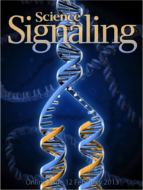 Science Signaling HIF1 cover expansion.png