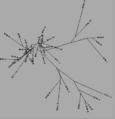 Thumbnail for version as of 22:09, 30 September 2014