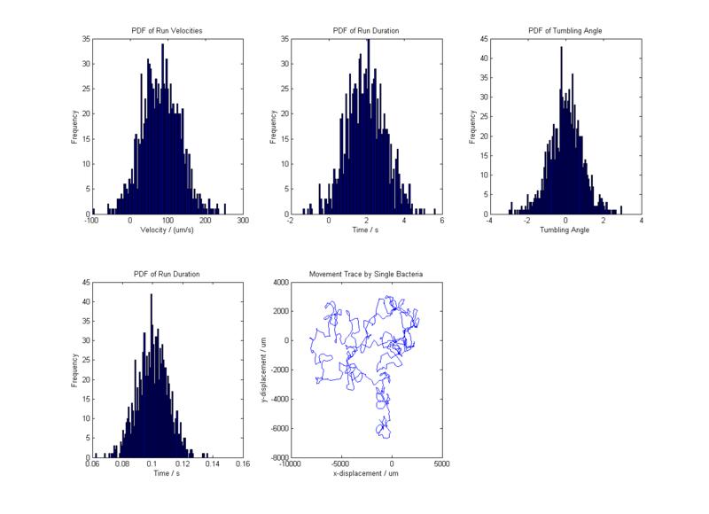 File:Motility Model.png
