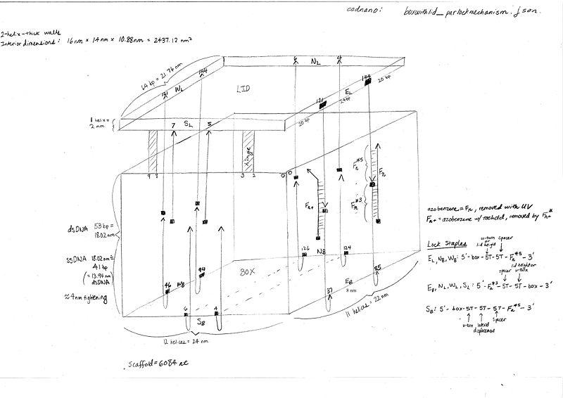 File:Boxwithlid parlockmechanism schematic.jpg