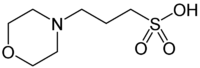 chemical structure of MOPS, 3-(N-morpholino) propanesulfonic acid