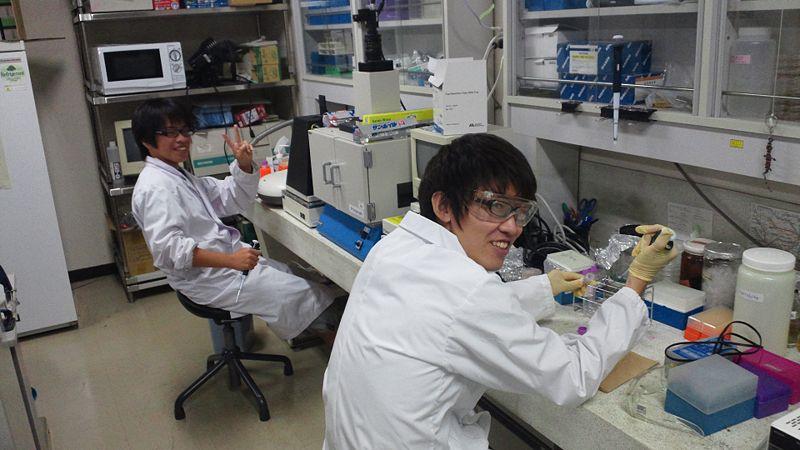 File:Biomod-2012-utokyo-uthongo-team-12.jpg