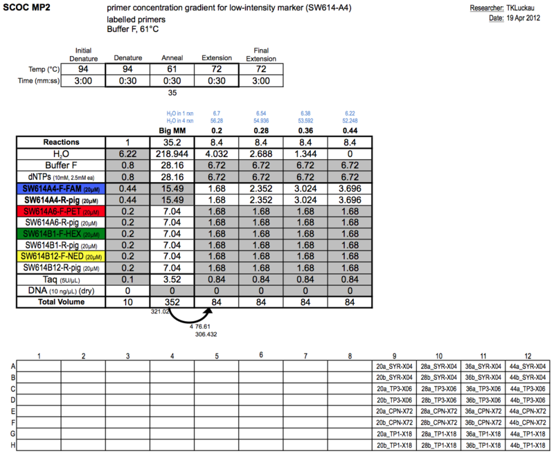 20130419 PCRb.png