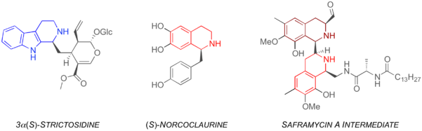 Figure 1: Natural PS products bearing the tetrahydro-β-carboline (blue) and tetrahydroisoquinoline moieties (red).