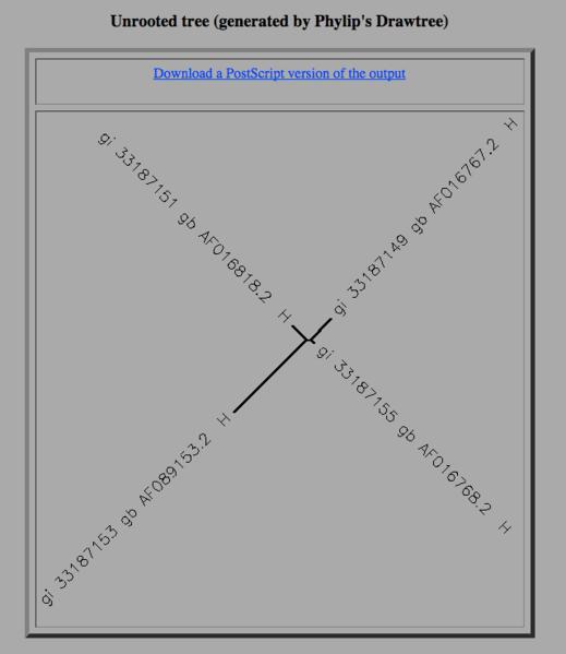 File:A1P3 ClustalW Dendrogram.png