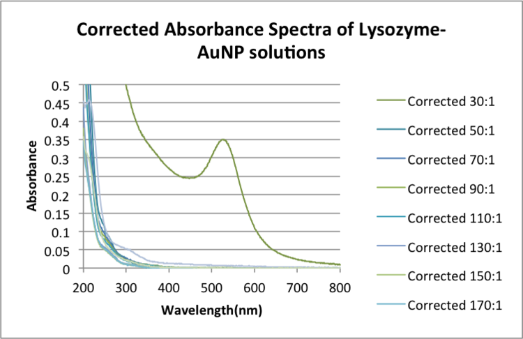 Corrected Absorbance Spectra of Lysozyme-AuNP solutions.png