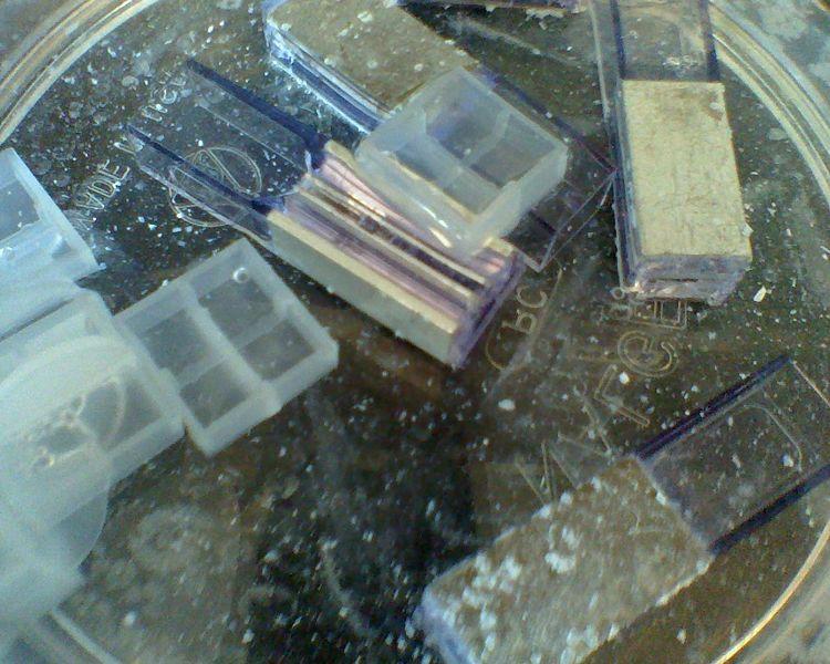 File:Electroporation cuvette soaked in bleach solution.jpg