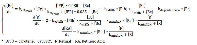 File:IPP RA equation.jpg