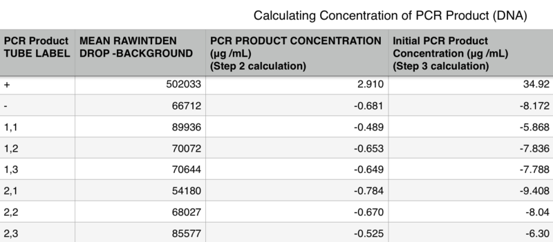 File:Concentration of PCR Product G12.png