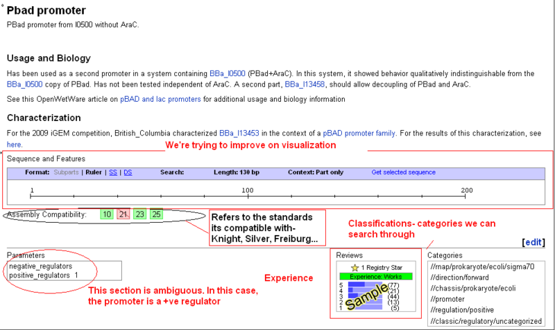 File:IC Bioinfs sample promoter entry.png