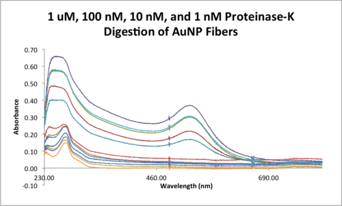 1 uM, 100 nM, 10 nM, and 1 nM Proteinase-K Digestion of AuNP Fibers .png