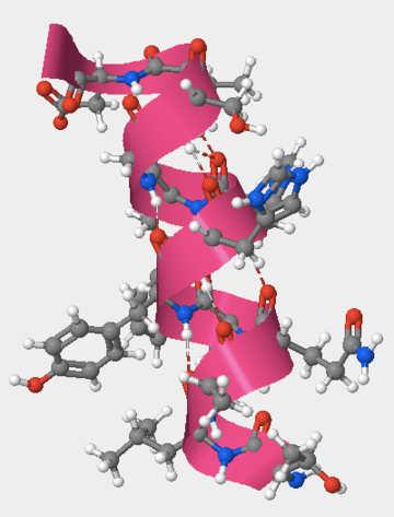 Figure 4: The alpha helix formed by amino acids 105 to 117.