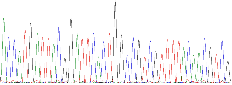 File:Seed-mystery-sequence-data.png