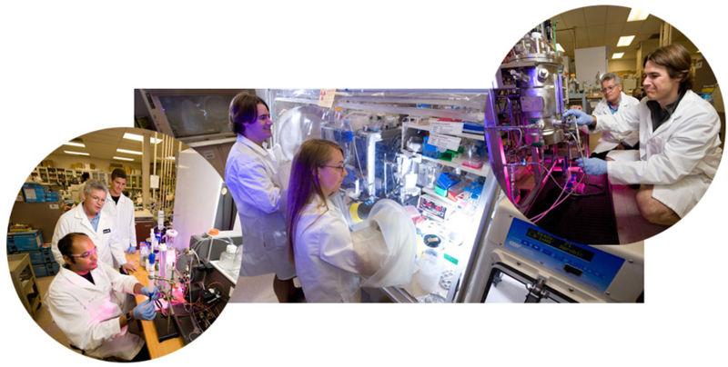 File:Swartz Lab 2010.jpg