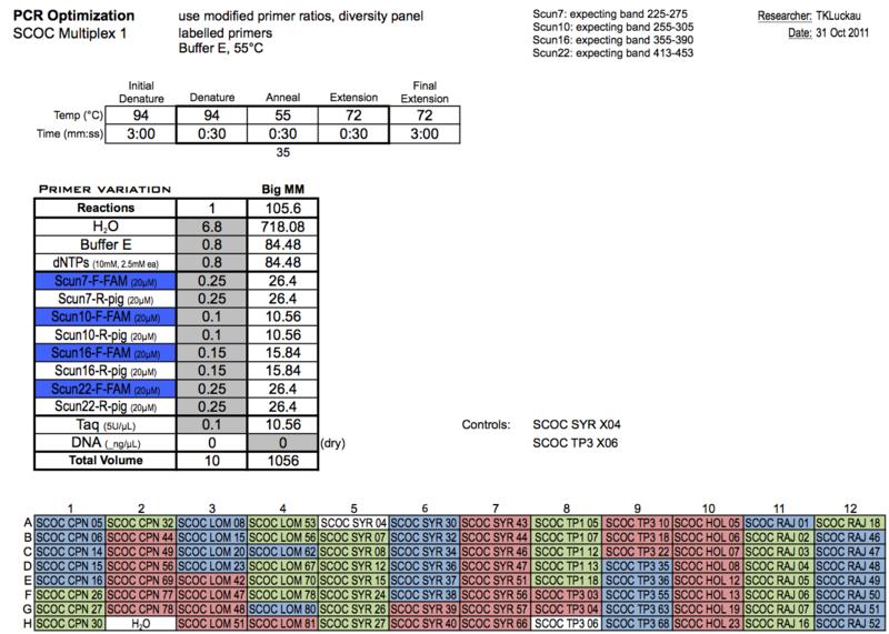 20111031 PCRa.png