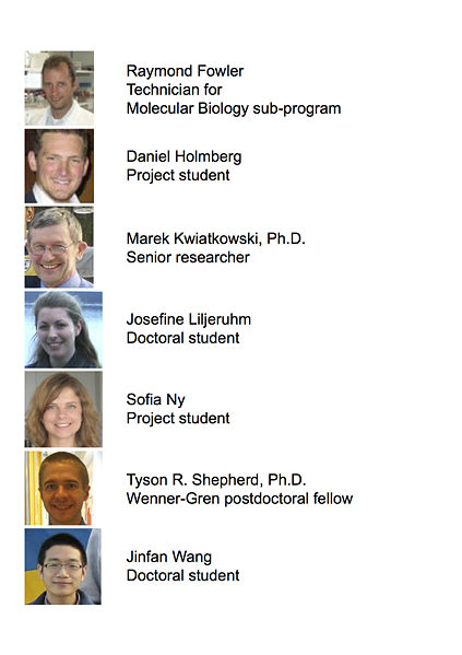 Image:2013 Forster lab members high res.jpg