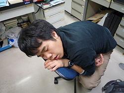 Sleeping Shingo