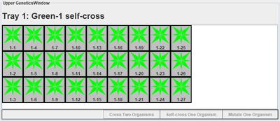 Green-1 self-cross