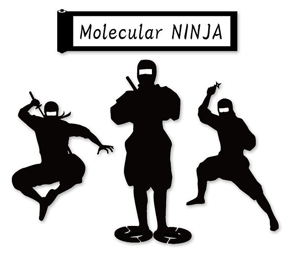 Molecular NINJA.jpg