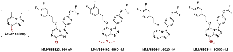 Modification of the Triazolopyrazine's 8-position