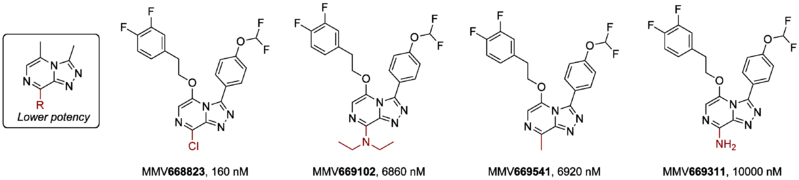 File:Pyrazine Substitution Mods.png