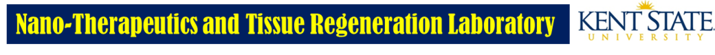 Kim lab logo2.png