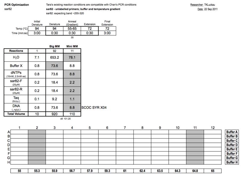 20110923 PCRa.png