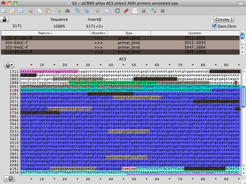 File:2013 05 08 demo of APE primer library tool.jpg