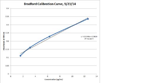 Bradford Calibration Curve 9-23.png