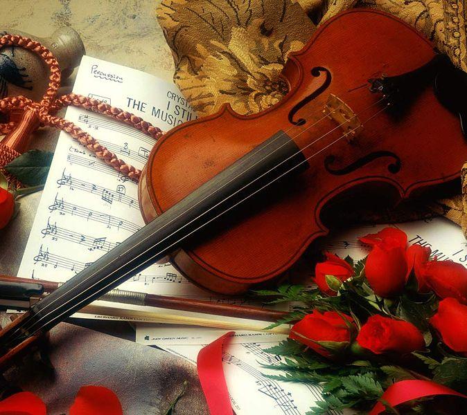 File:Violin rose.jpg