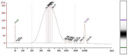Bioanalyzer-sunbirds-plate3.jpg