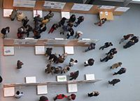 People at a typical scientific poster session