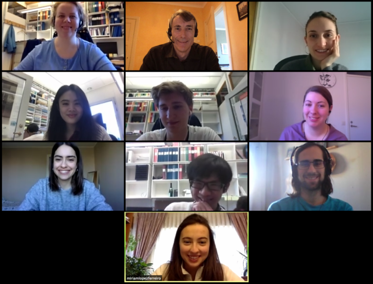 20200421 Forster lab meeting by Zoom.png
