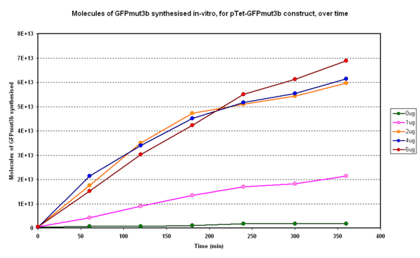 Fig.1.1:Molecules of GFPmut3b synthesised over time, for each DNA Concentration in vitro - The fluorescence was measured over time for each experiment and converted into molecules of GFPmut3b in vitro using our calibration curve.