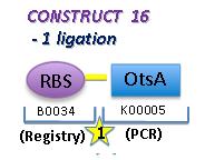 File:II09 M2 C16.jpg
