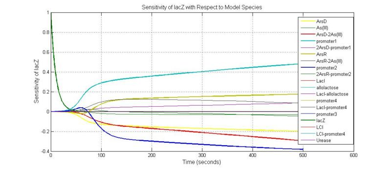 File:Sensitivity of lacZ with Respect to Model Species.jpg