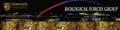 Thumbnail for version as of 19:00, 7 November 2012