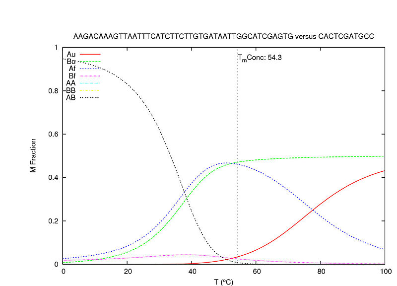 File:Biomod-2012-UTokyo-UT-Hongo-Exsample of simulation about hybrizidation for mid.jpg