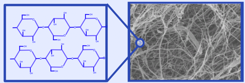 File:Cellulose structure picture.PNG
