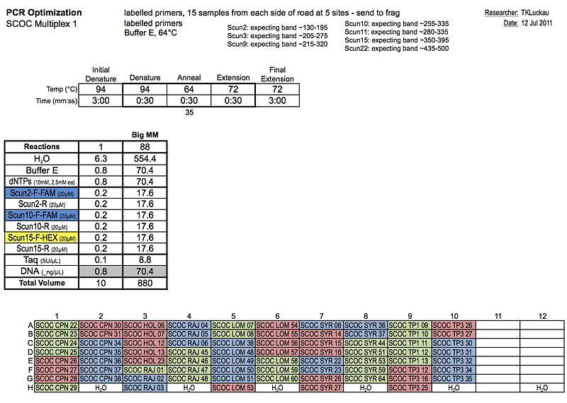 20110712 PCR.jpg