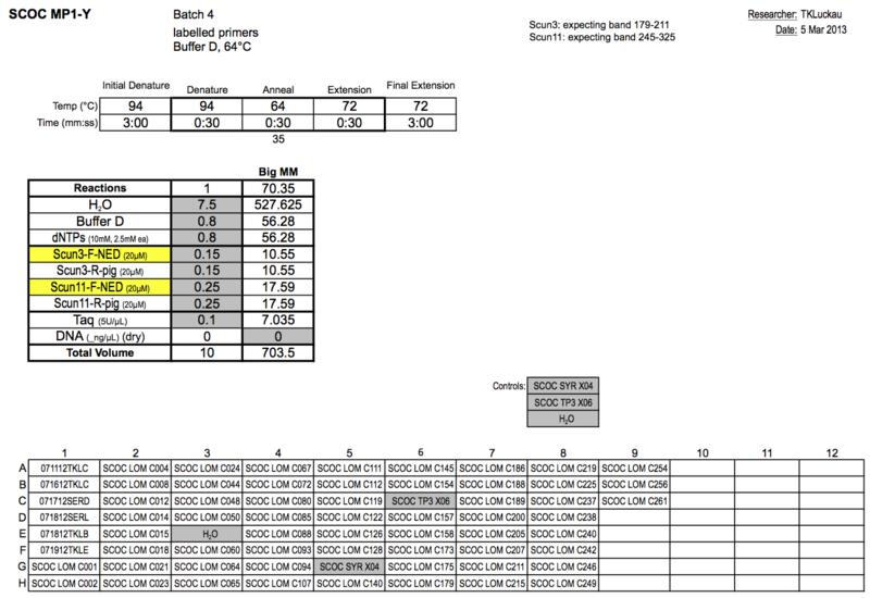 File:20130305 PCRc.png