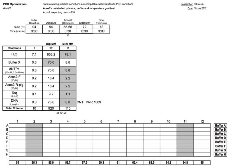 20120110 PCRa.png