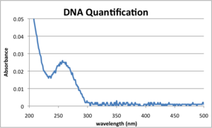20120911 DNAquantification.png