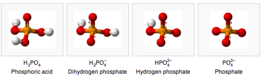 the pH dependent forms of phosphate (wikipedia)
