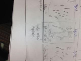 File:Bacteria sketch.jpeg
