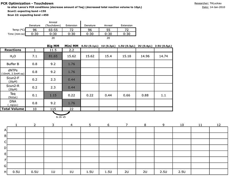 20110114 PCROpt Touchdown.jpg